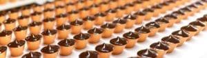 Bakery / Biscuit Conveyor Belts
