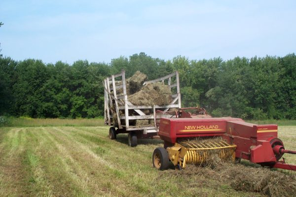 Square baler at work using belt