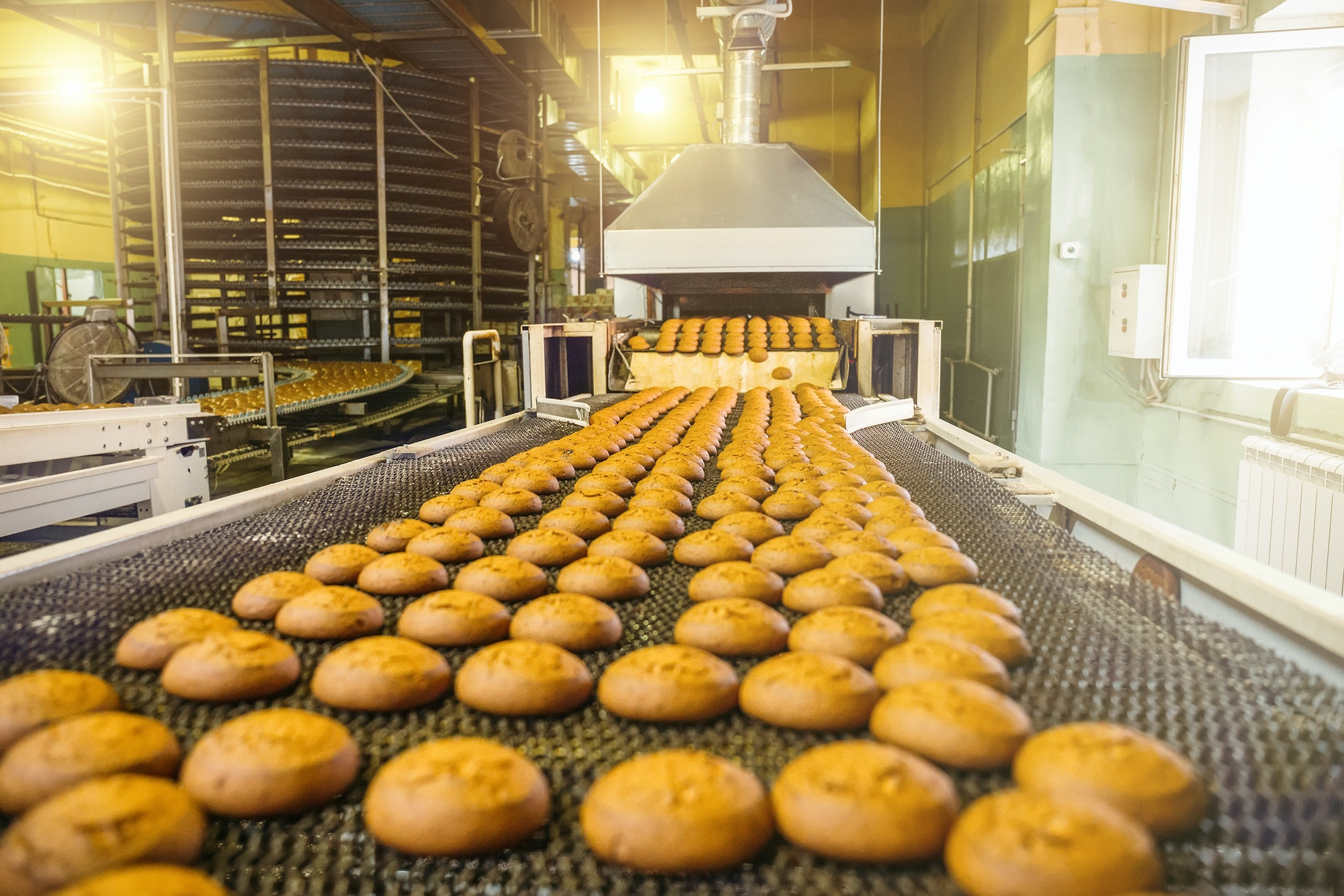 bakery products being transported on conveyor belt