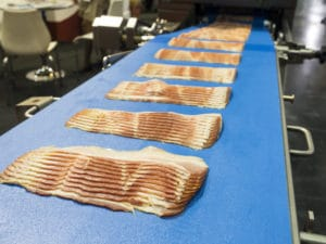 Food processing belts